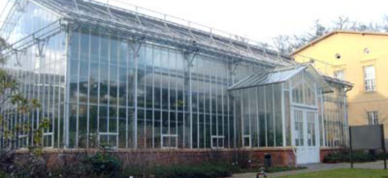 Botanischer Garten Der Universität Potsdam Wis Wissenschaftsetage